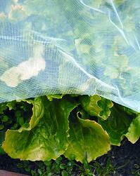 Gardiso schutznetze sicht und balkonschutz for Insektenschutznetz garten